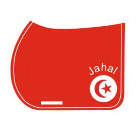 Tapis de selle Tunisien