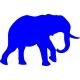 www.nathali-embroidery.fr-éléphant -1-bleu-royal-inversé-personnalisation-fabrication-française