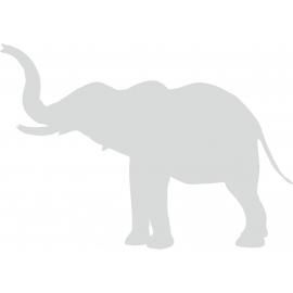 Sticker Eléphant 3 Plusieurs tailles au choix