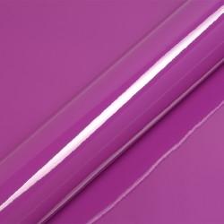 Violet-5480